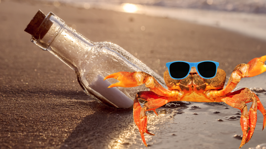 Message in  bottle on beach with cool crab in sunglasses