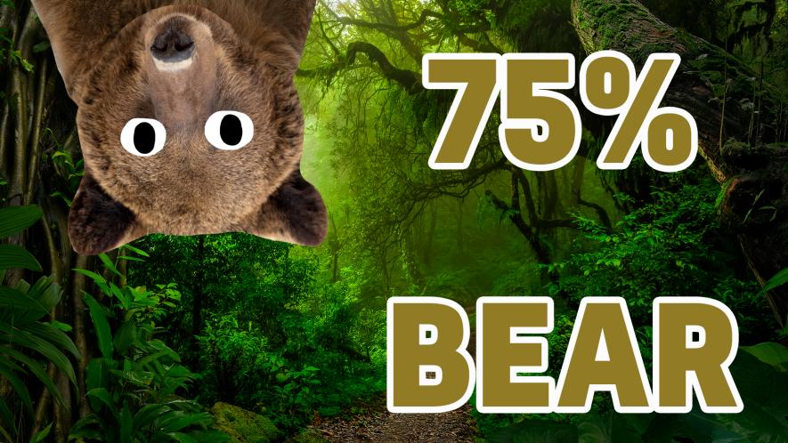 75% Bear result