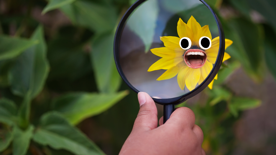 Hand examining flower with face under magnifying glass