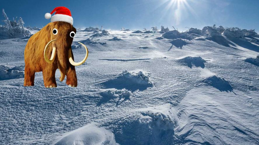 A mammoth in an icy environment