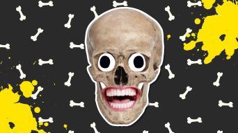 Bones jokes
