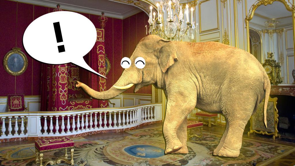Elephant inside a royal suite