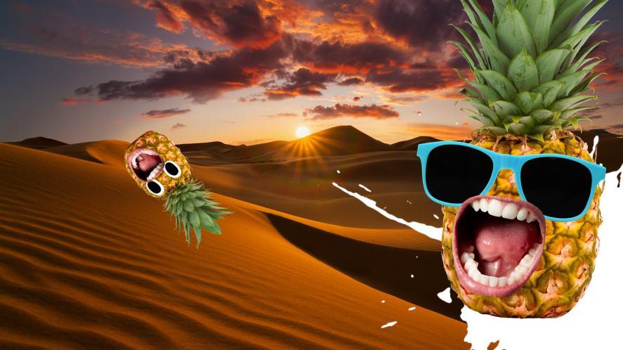 Pineapples in desert
