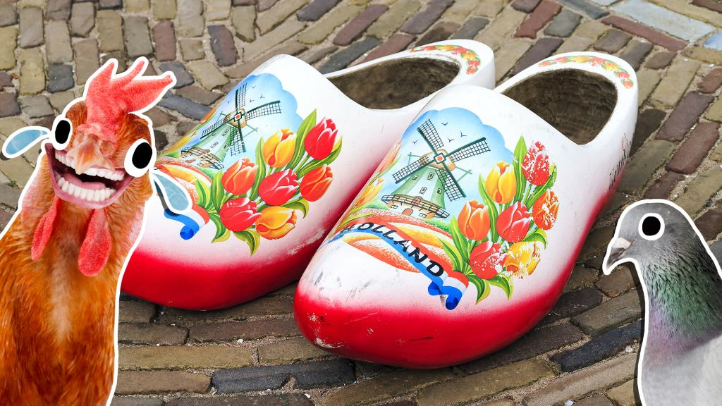A pair of Dutch wooden clogs, a laughing chicken and a pigeon