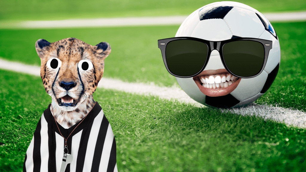 Referee cheetah and football with face on grass