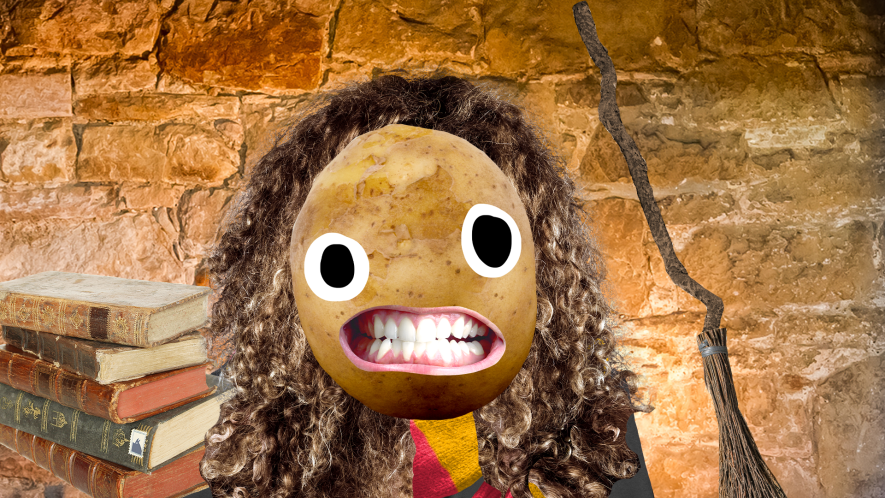 Potato Hermione on brick background with books and broom