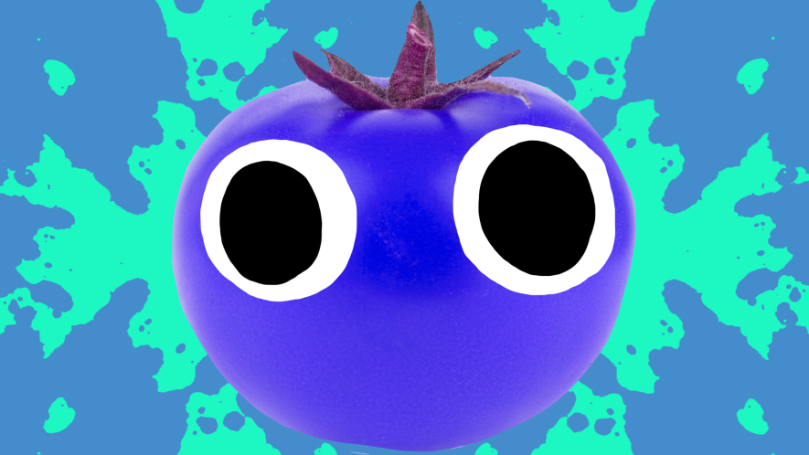 Blue tomato with eyes on blue and green background