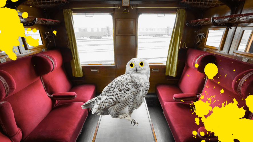 Train carriage, Hedwig and yellow splats
