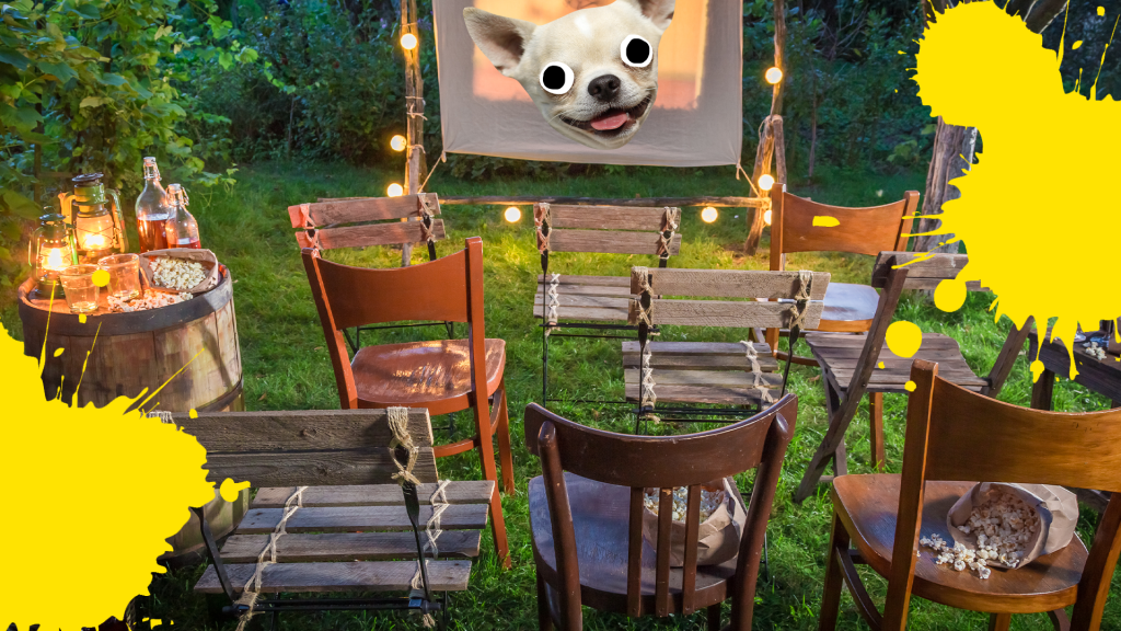 Outdoor cinema with derpy dog face and yellow splats
