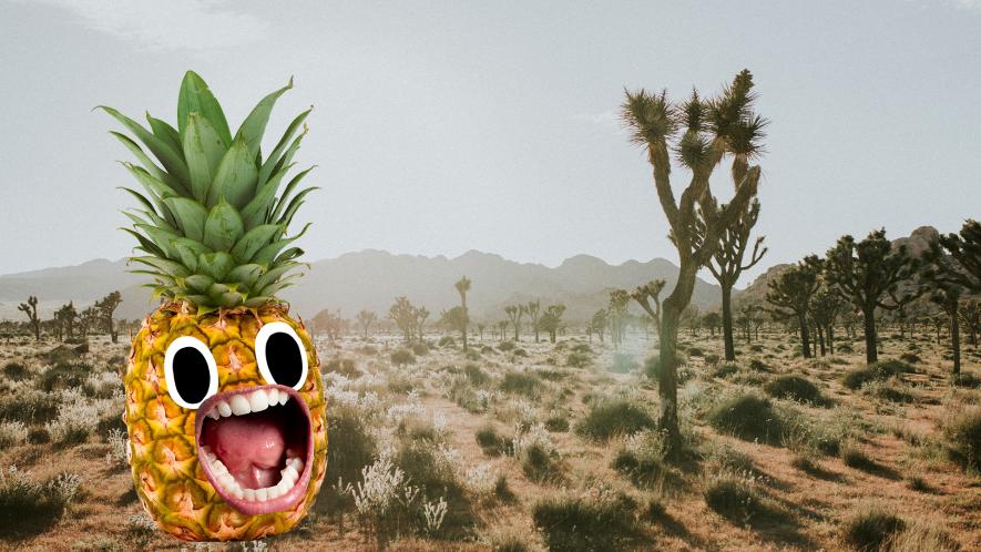 Californian desert with screaming pineapple