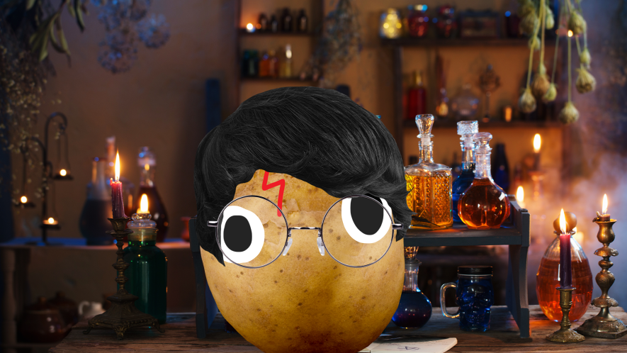 Potato Harry and magical potions