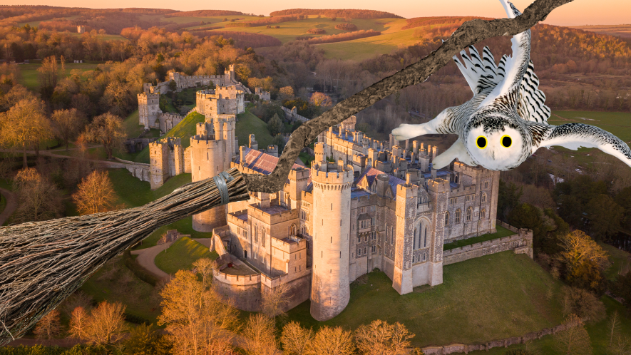 Castle and grounds with Hedwig and broom