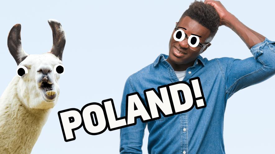 Poland result