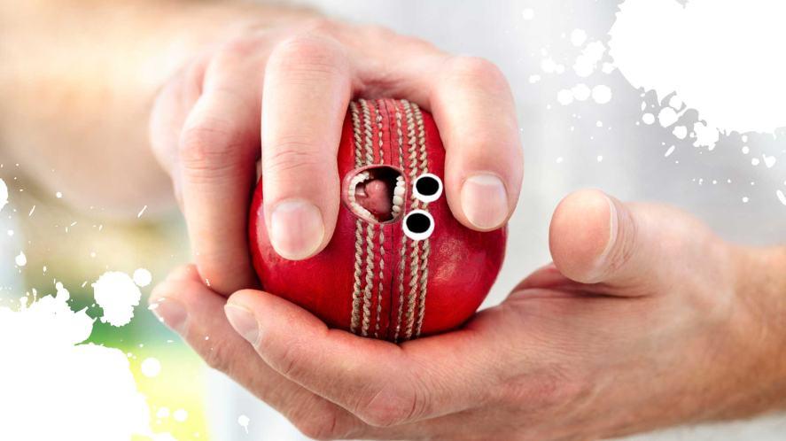 A bowler holding a cricket ball