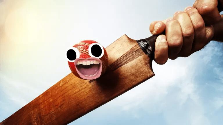 A cricket bat
