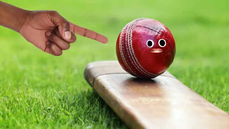 A person pointing to a ball balancing on a cricket bat