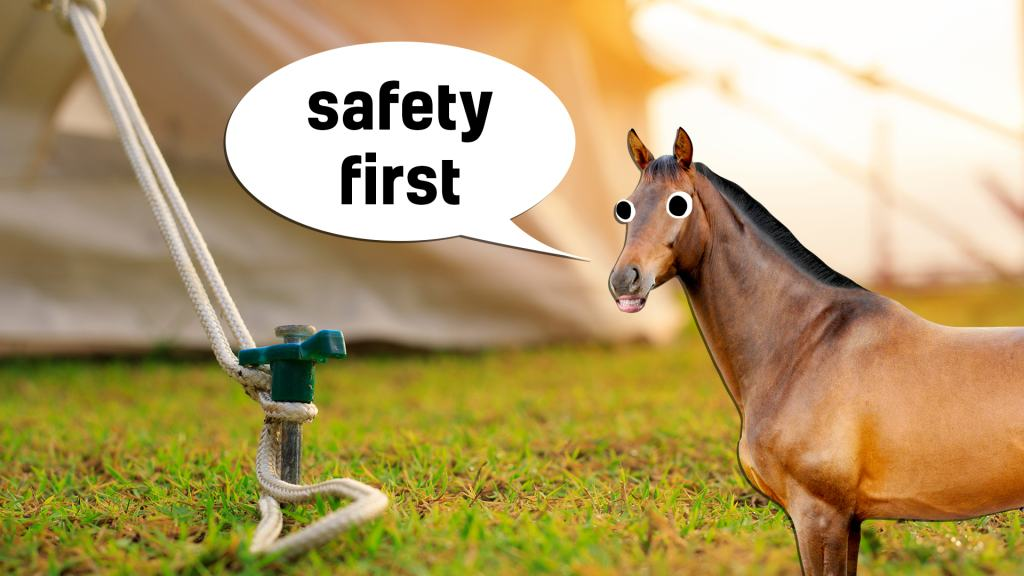 Horse gives you some useful advice