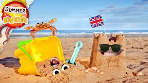 Summer of Adventure: Beach Facts