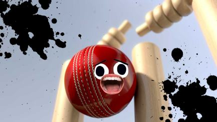 A wicket hitting the stumps