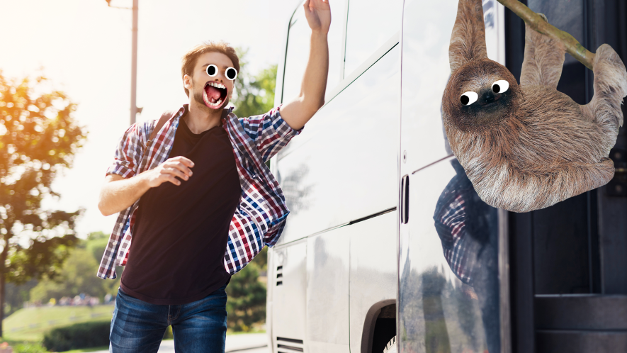 Man running for the bus and derpy sloth