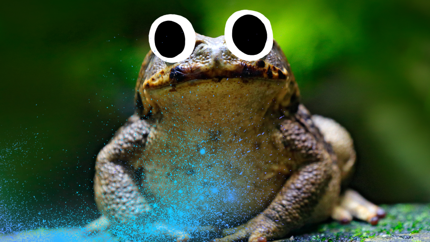 Toad with Beano eyes and magic glitter