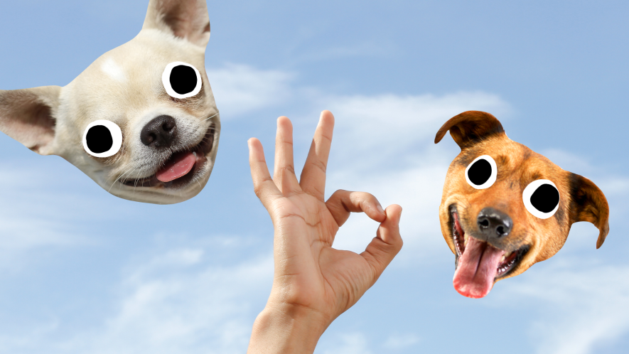 Hand doing fun sign with Beano derpy dog faces on sky background