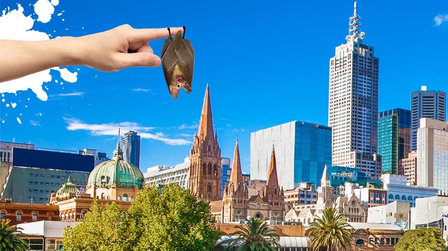 A picture of Melbourne