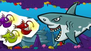 Check out the Shark Tank!