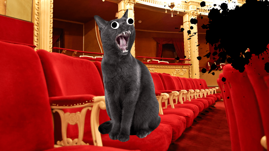 A cat meowing in a theatre