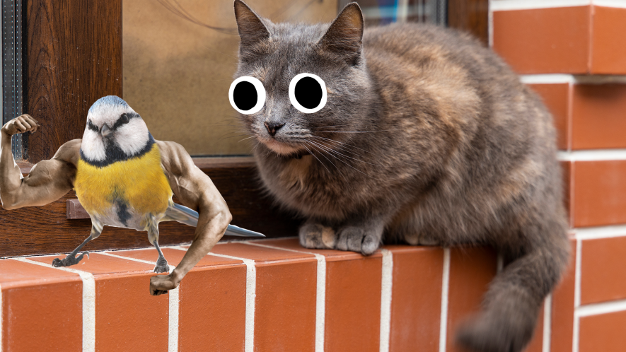 A cat and a muscular bird sit on a wall