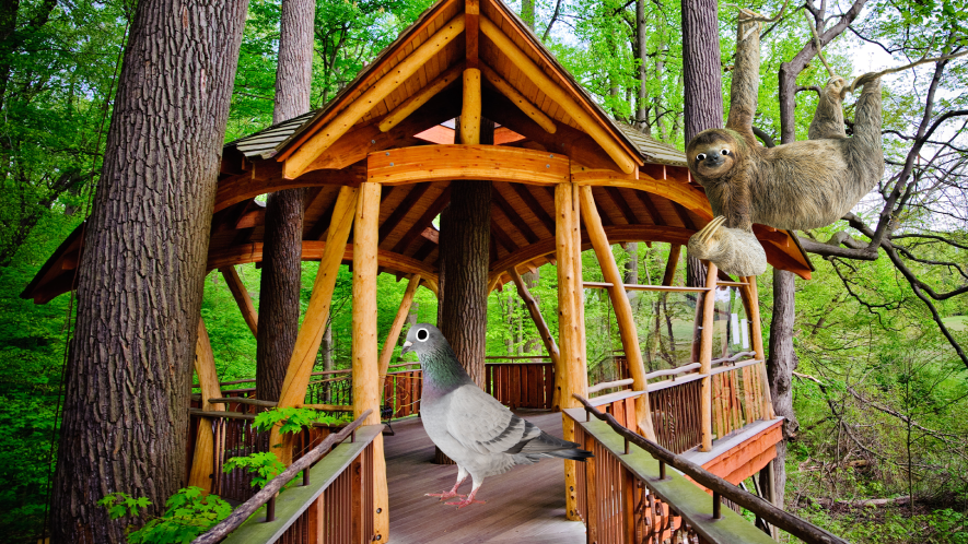 A sloth and a pigeon relax in a treehouse