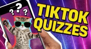 TikTok Quizzes