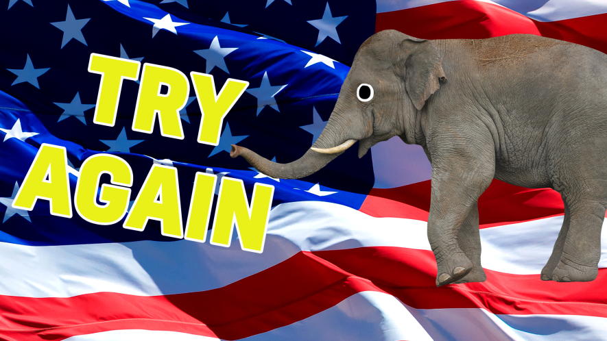 An elephant in front of the USA flag