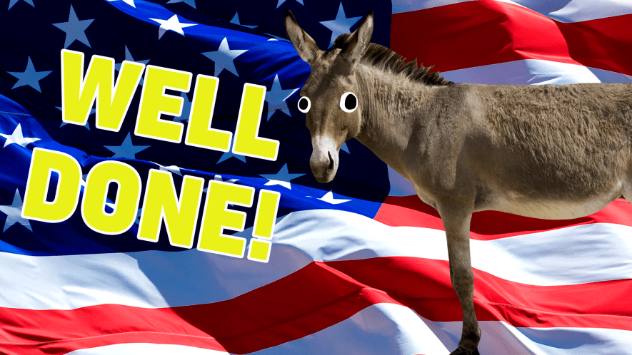 A donkey in front of the USA flag