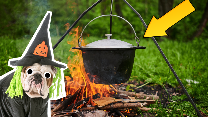 Beano witch dog with bubbling cauldron and arrow