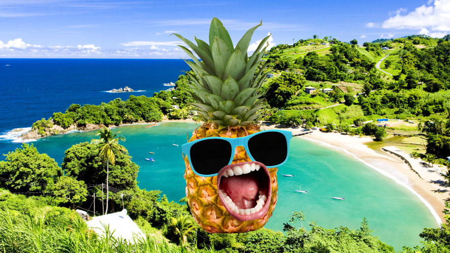 Pineapple in sunglasses on tropical beach background
