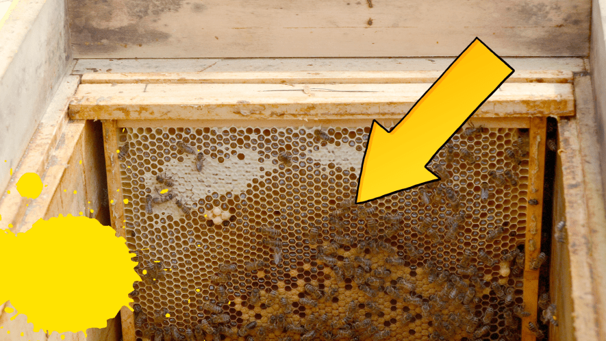 Arrow pointing to beehive with yellow splats