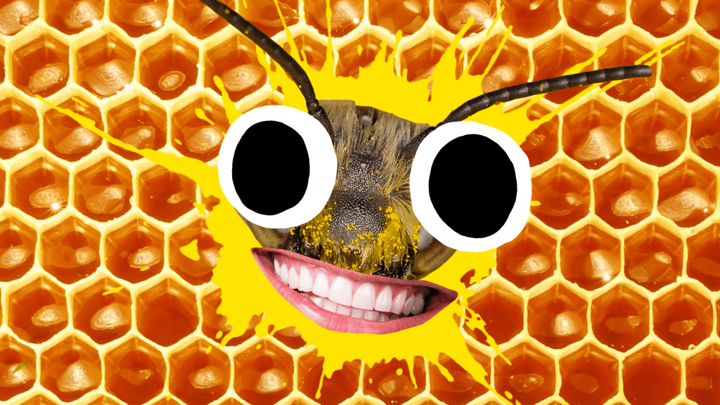 Grinning bee face on yellow splat and honeycomb background