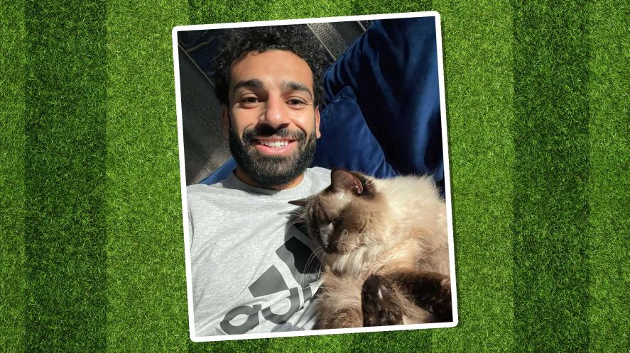 Mo Salah and a cat
