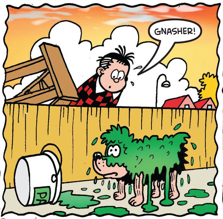 Gnasher gets soaked in paint