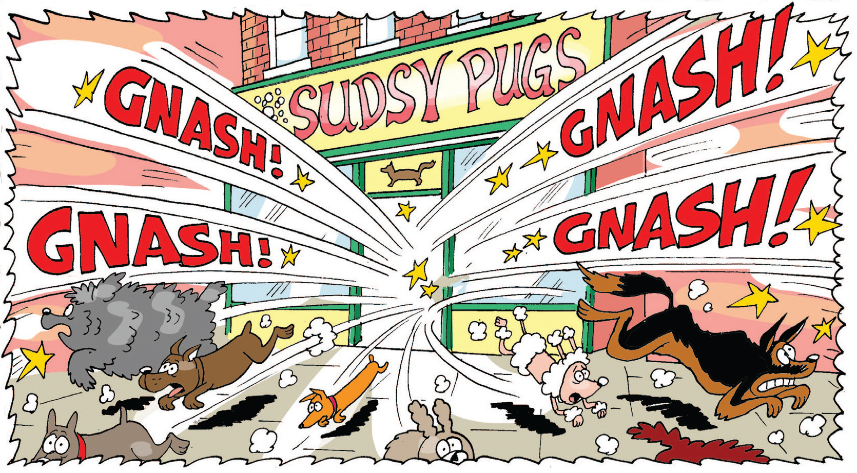 Gnasher trashes the dog salon