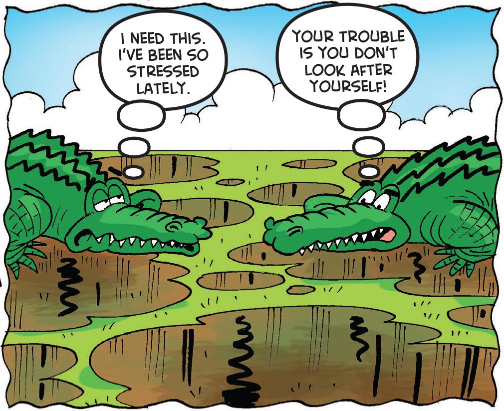 Sewer gators appear