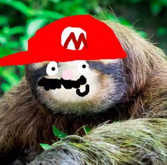 Super Mario Sloth