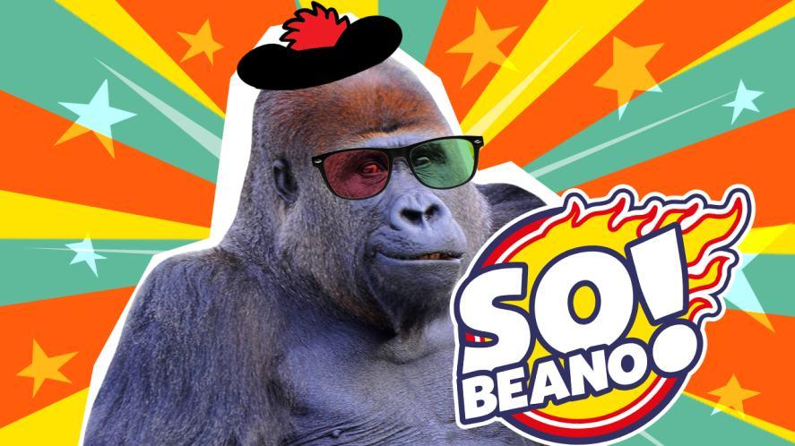 The winning gorilla