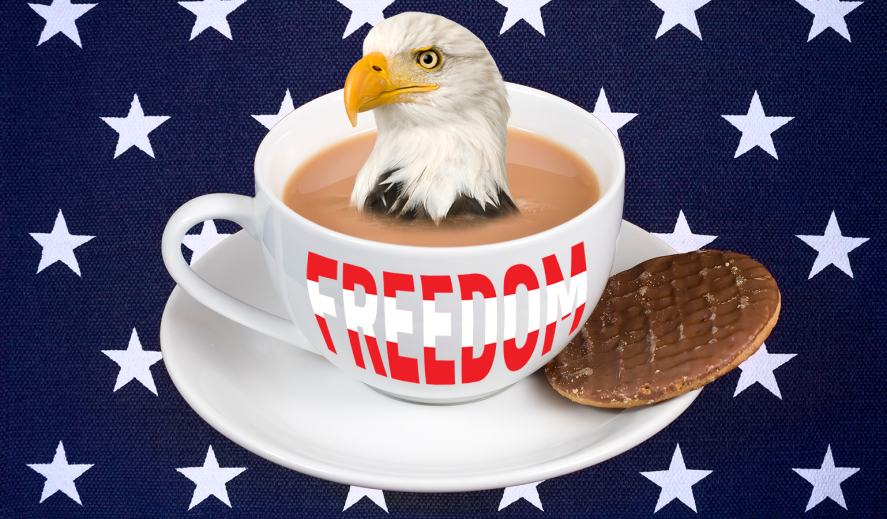 An America Eagle sitting in a cup of tea, with a chocolate biscuit on the saucer