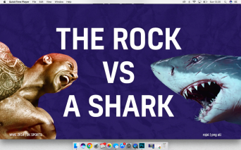 The Rock vs A Shark