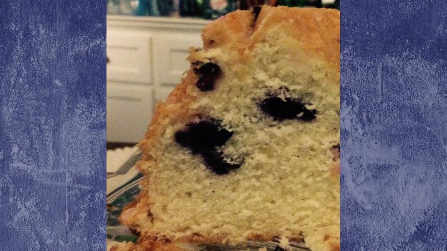 Dog or cake?