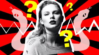 taylor swift and some snakes and question marks and stuff