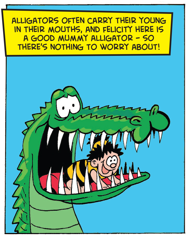 Croc Shock: Please don't Bea hungry!