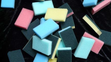 A bunch of sponges